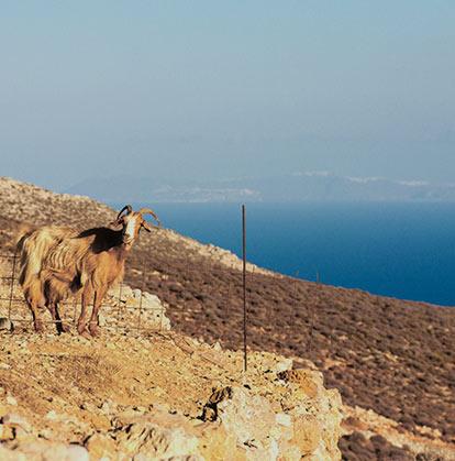 Trekking a Folegandros